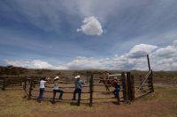 badger-creek-ranch-3.jpg