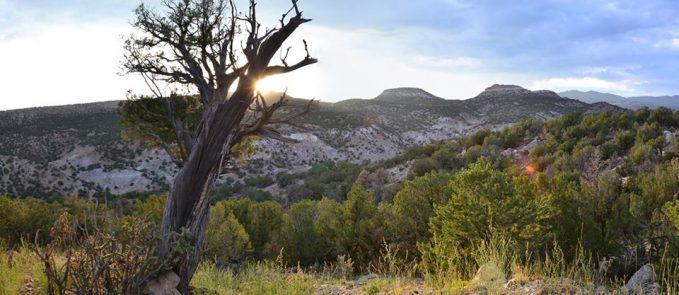 Garden_Park_Fossil_Area_of_Critical_Environmental_Concern,_Colorado_(15671765682)
