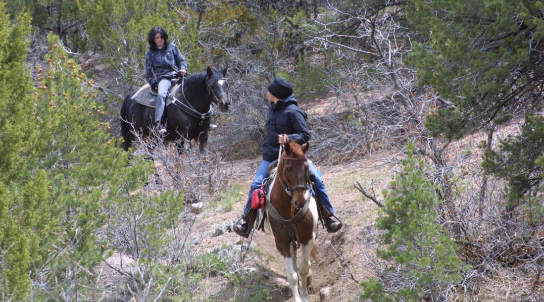 Horseback Riding in the Royal Gorge Region