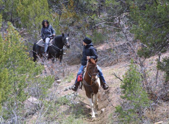Horseback Riding in the Royal Gorge Region