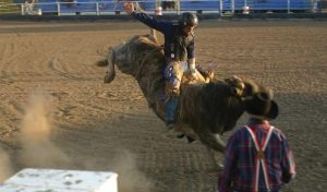 Bull Riding in Fremont County