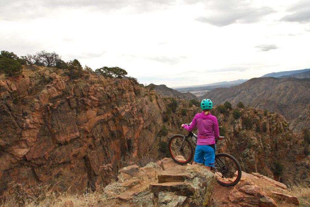 Biker Overlooking Scenery